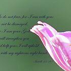 Isaiah 41:10  by Susan S. Kline