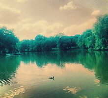 Down By The Bay - Edit by joshgranovsky