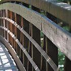 Bridge over Alsea Falls by Tamara Lindsey