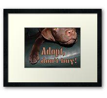 Adopt don't buy Framed Print