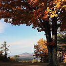 Autumn - View of Mt. Kearsarge & Kezar Lake by T.J. Martin