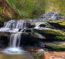 Leura Cascade #1 by Terry Everson