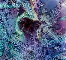 Jack Frost's Scribbles 3 by Richard Maier