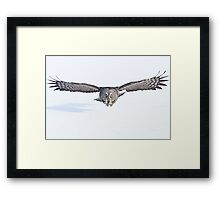 Winged avenger Framed Print