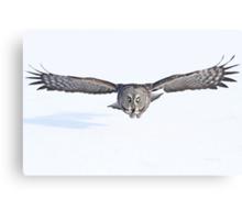 Winged avenger Canvas Print