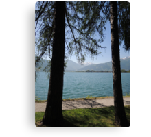 Zell Am See: Lake Through Trees Canvas Print