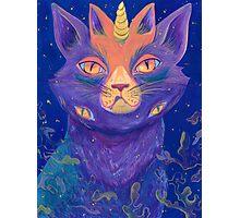 Galactic Kitties: Topaz Photographic Print