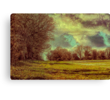 Winter Field 2 Canvas Print