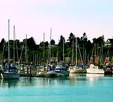 Squalicum Harbor Boats by kchase