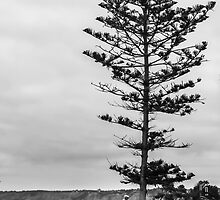 Cloudy Day In La Jolla by heatherfriedman