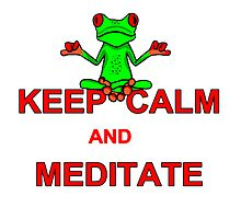 Keep Calm and Meditate Tree Frog by imphavok