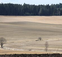 Farm land. Spring time. Norway. by UpNorthPhoto