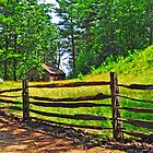 Fences of New England by Caleb Ward