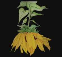 Lori's Sunflower by Anne Gitto
