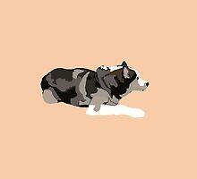 Peach Husky by pupsofnyc