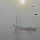 Ship Margaret Todd in Fog, Bar Harbor, Maine by Dan Hatch