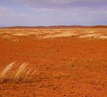 Australian Outback by jwwallace