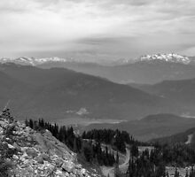 Whistler in Mono by Tracy Friesen