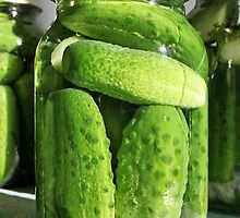 homemade pickled cucumbers by mrivserg