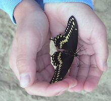 Butterfly Friend by Kathleen Brant