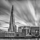 Shard by Brian Dukes