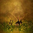 Wild Turkey by swaby