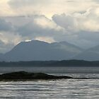 Isle of Mull Dusk by albyw