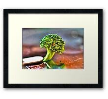Micro Photography of Broccoli Framed Print