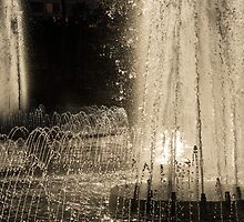 Silver Fountains Dancing in the Sun by Georgia Mizuleva
