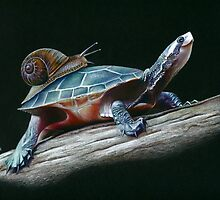 Hitching a Ride by Karen  Hull