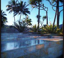 Pool by Niki Smallwood
