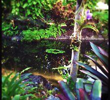 Pond Life by Niki Smallwood