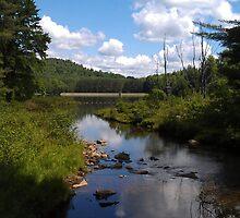 Parker Dam State Park, PA by teresa731