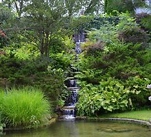 Japanese Garden 3 by Debbie  Maglothin