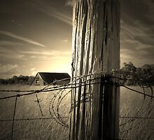 Farm Fence Post rustic barb wire photography by jemvistaprint