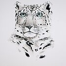 Snow Leopard by Paul Fearn