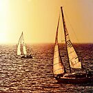 Sailboats at Sunset by jjbentley