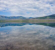 Mirror, Lake McDonald, Montana by Harry Oldmeadow