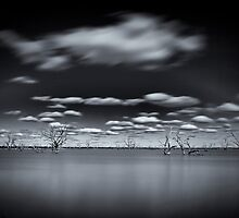 Surreal - Lake Pinaroo, NSW by Malcolm Katon