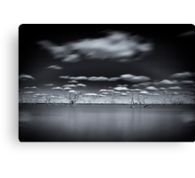Surreal - Lake Pinaroo, NSW Canvas Print