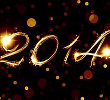 2014 by maydaze