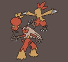 Torchic, Combusken and Blaziken by Funkymunkey