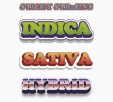INDICA, SATIVA, HYBRID STICKERS by StickyStrains