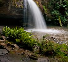 Time Out,Lower Kalimna Falls by Darryl Fowler