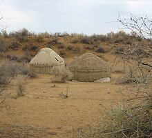Yurts on the Steppe by Mary-Elizabeth Kadlub