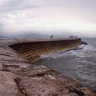 The Cobb at Lyme Regis in Dorset by Andy Coleman