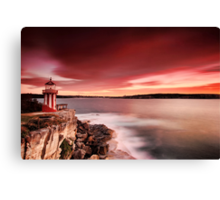 Under the Red Sky Canvas Print