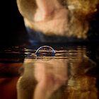 Muzzle Bubble by Penny Kittel
