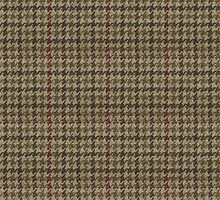 London Highland Tweed 1 by ixrid