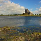 Dunguaire Castle, Kinvarra by Adrian McGlynn